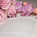 Booklover-fantastischeWelten